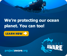 pa badge 300x250 oceanplanet we