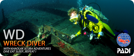 wreck diver mini header