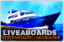 khao lak liveaboards similan label
