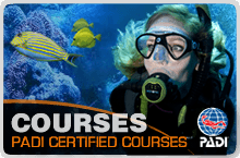khao lak padi scuba courses label